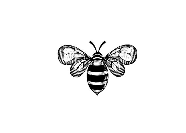 Steven Noble Illustrations: Bee Icon