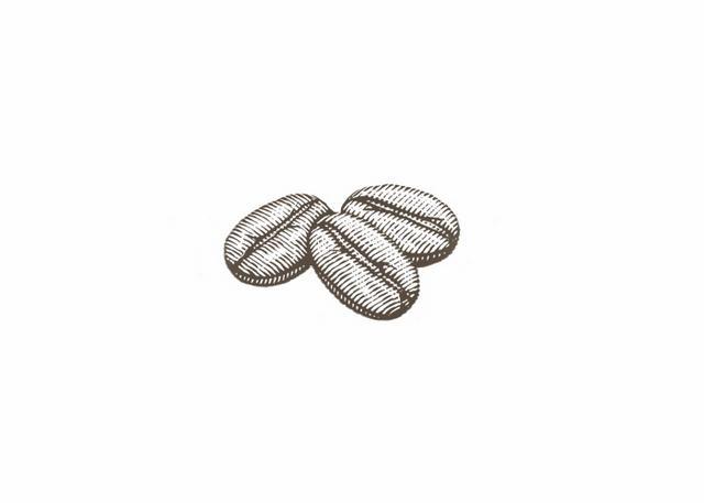 Steven Noble Illustrations Coffee Beans