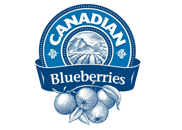 Canadian Blueberries logo
