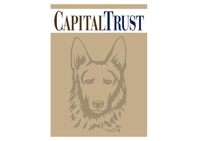 Steven Noble Illustrations Capital Trust